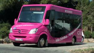 Icilà d'envibus : le transport à la demande
