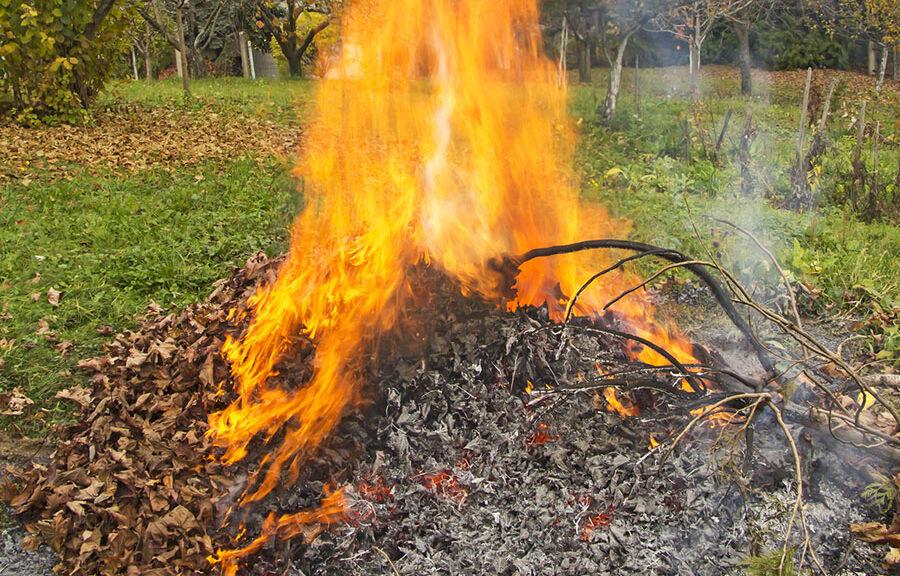 Incinération des déchets verts interdite
