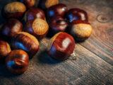 Les fruits et légumes de saison du mois d'octobre