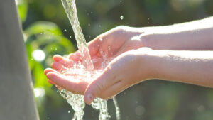 Alerte sécheresse : réduction des consommations d'eau